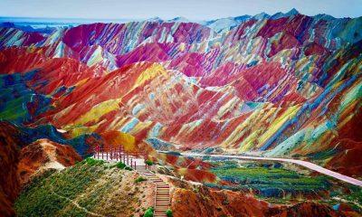 muntii rainbow