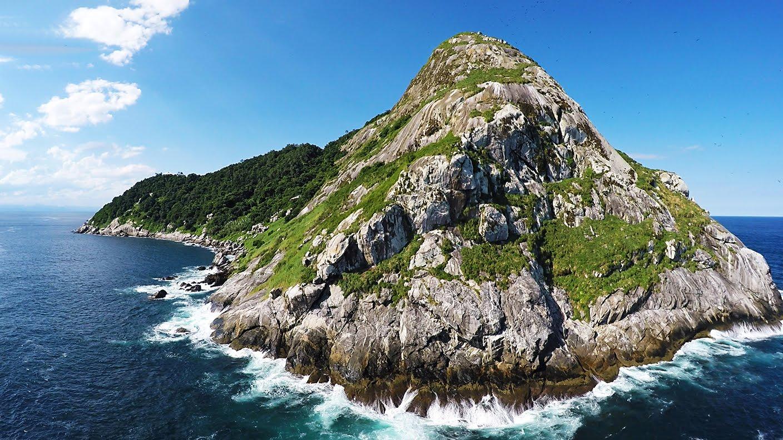 Ilha de Queimada Grande