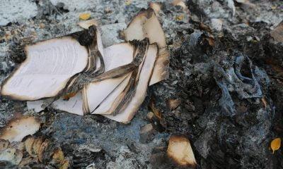 carte arsa