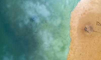 culoare ocean