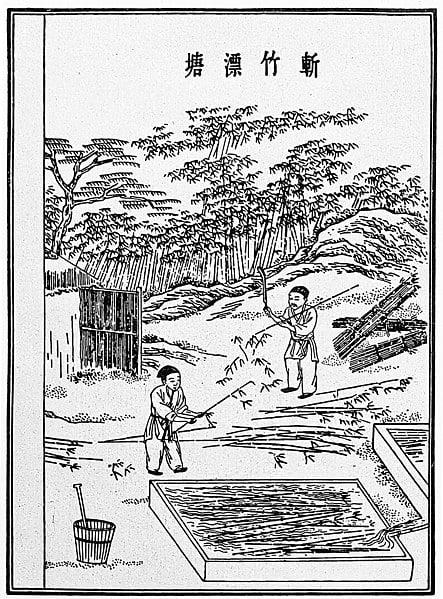 Cinci pași de fabricare a hârtiei - Pasul 1 - Tăierea și hidratarea fibrelor din bambus - Așa cum a fost descris de Cai Lun în 105